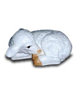 a owieczka