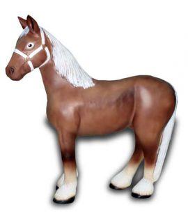 Koń średni