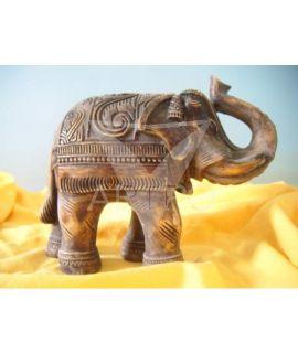 Słonik indyjski