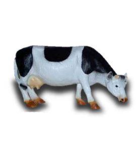 Krowa pasąca się