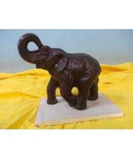 Młody słoń z uniesioną trąbą