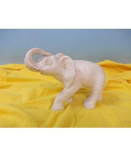 Słoń afrykański z długimi ciosami