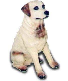 Labrador siedzący