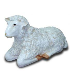 Duża owca