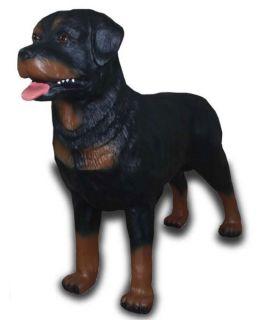 Rottweiler stojący