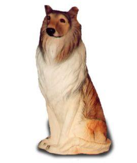 Collie- Owczarek szkocki