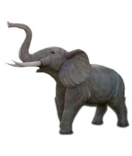 Duży słoń
