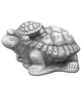 Dwa żółwie
