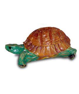 Niewielki żółw