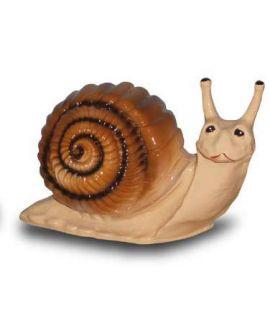 Forma ślimaka
