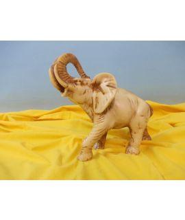 Dorosły słoń afrykański