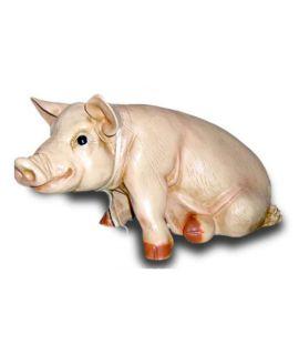 Siedząca świnia