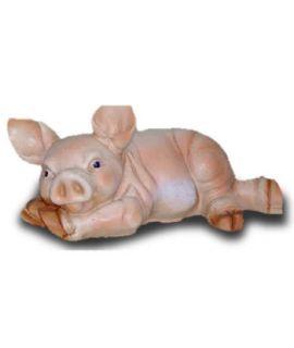 Świnka leżąca