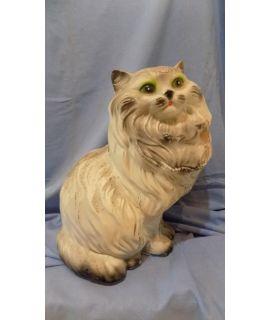 Forma Perskiego kota