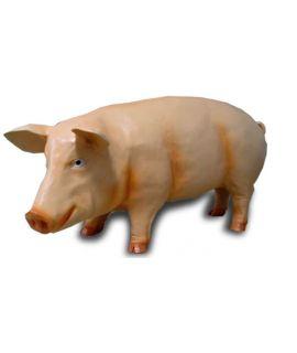Świnia stojąca