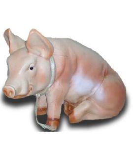 Świnia siedząca
